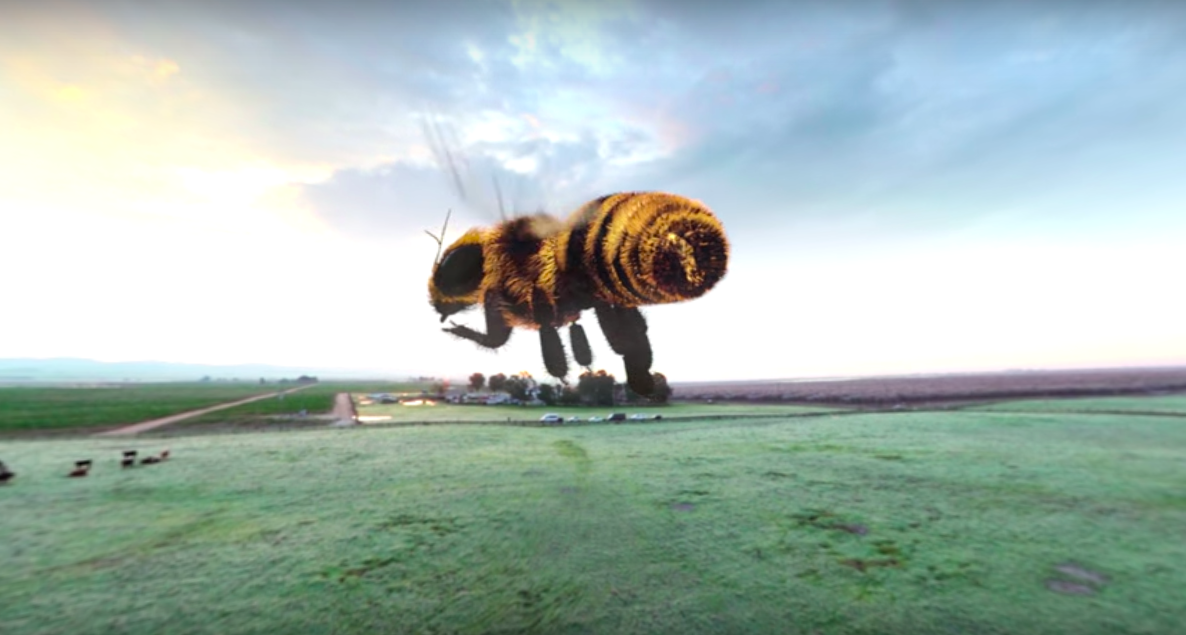 The Extraordinary Honeybee | A 360 VR Experience | Häagen-Dazs